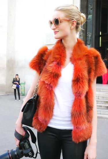 Coral Fur | Paris Trends | Color Trends